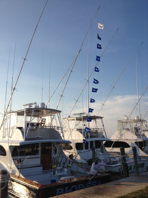 9/12/14 Top Boat for Oregon Inlet Billfish Roundup